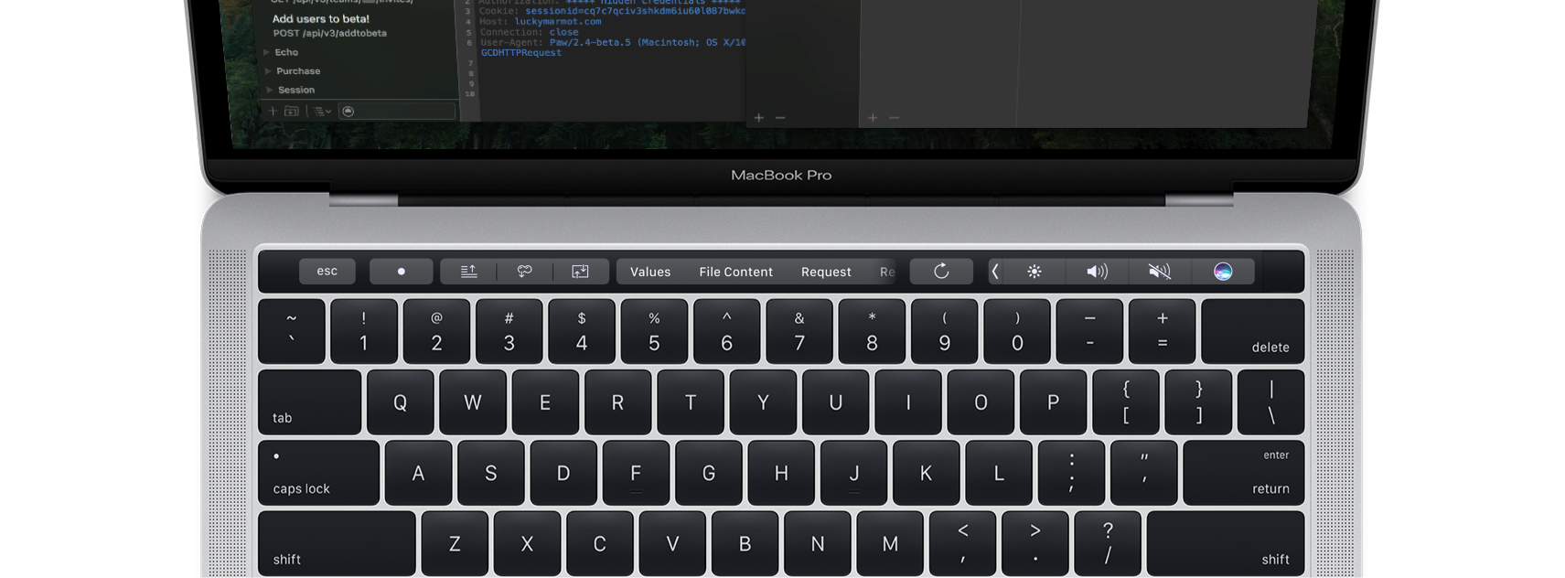 Paw 3.0.14 adds support for Touch Bar on the new MacBook Pro and request dependencies